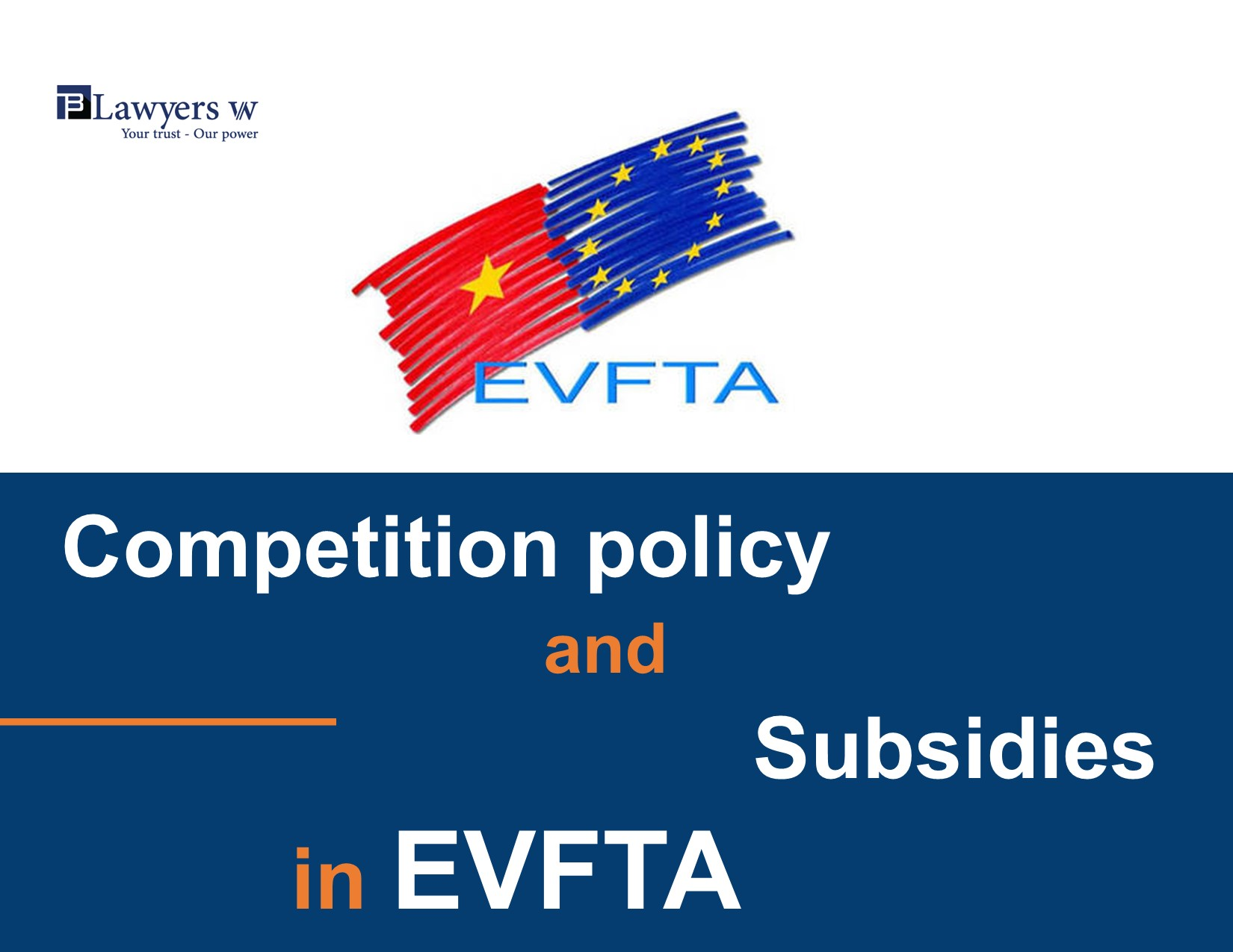 Competition policy and subsidies in EVFTA